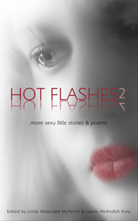 Hot Flashes Sexy Stories 2