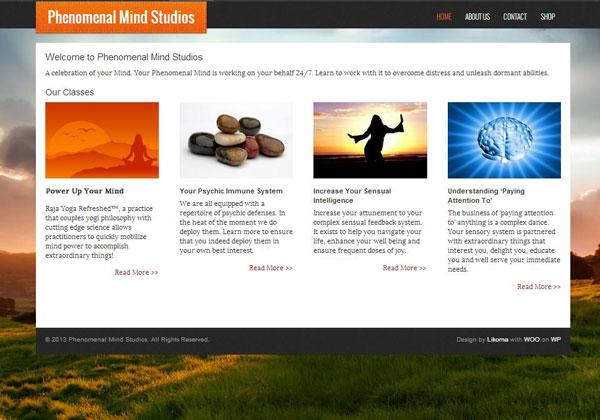 Phenomenal Mind Studios