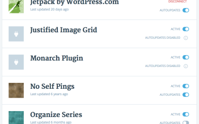Reduce security risks with automated plugin updates from WordPress.com